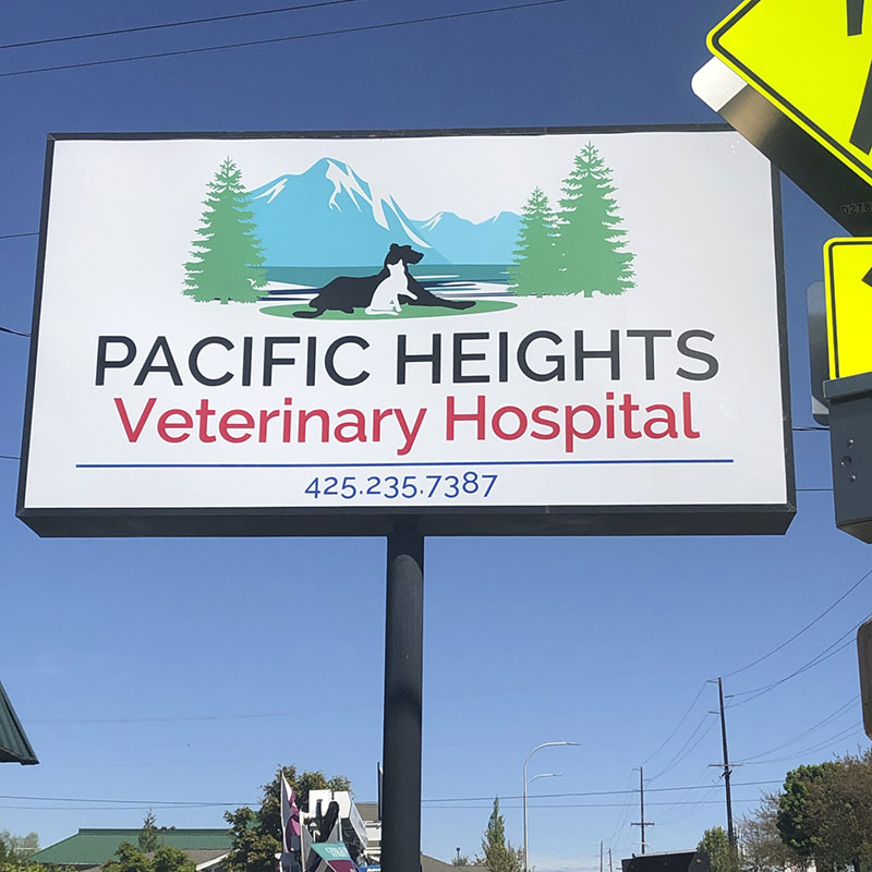 pacific-heights-vet-1